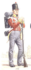 A Waterloo Soldier